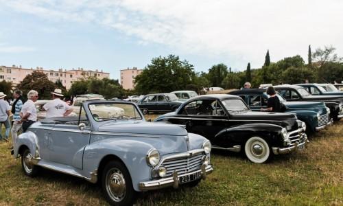 Peugeot 203 Coupé et Cabriolet : quand les populaires se font raretés