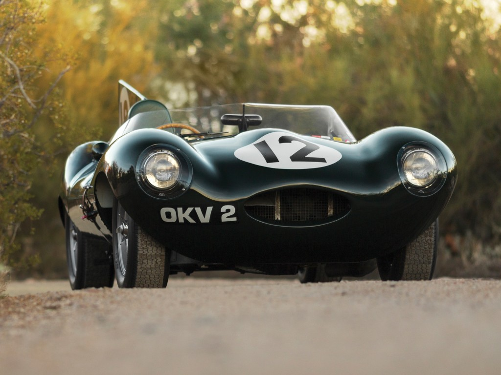 Jaguar D-Type -  Short Nose