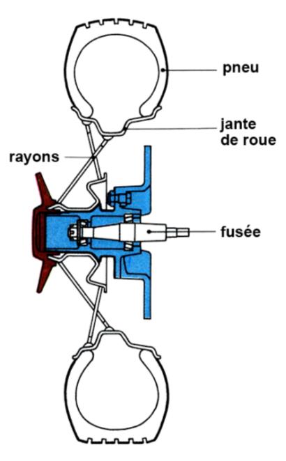 Rayons